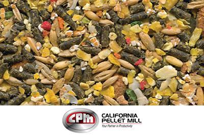 CPM Feed
